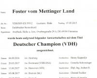 12_Deutscher_Champion_VDH